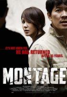 Montage ( 2013 )