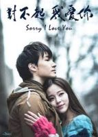 Sorry I Love You (2013)