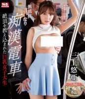 [SSNI-229]  Silent Obedience On The Train (2018)